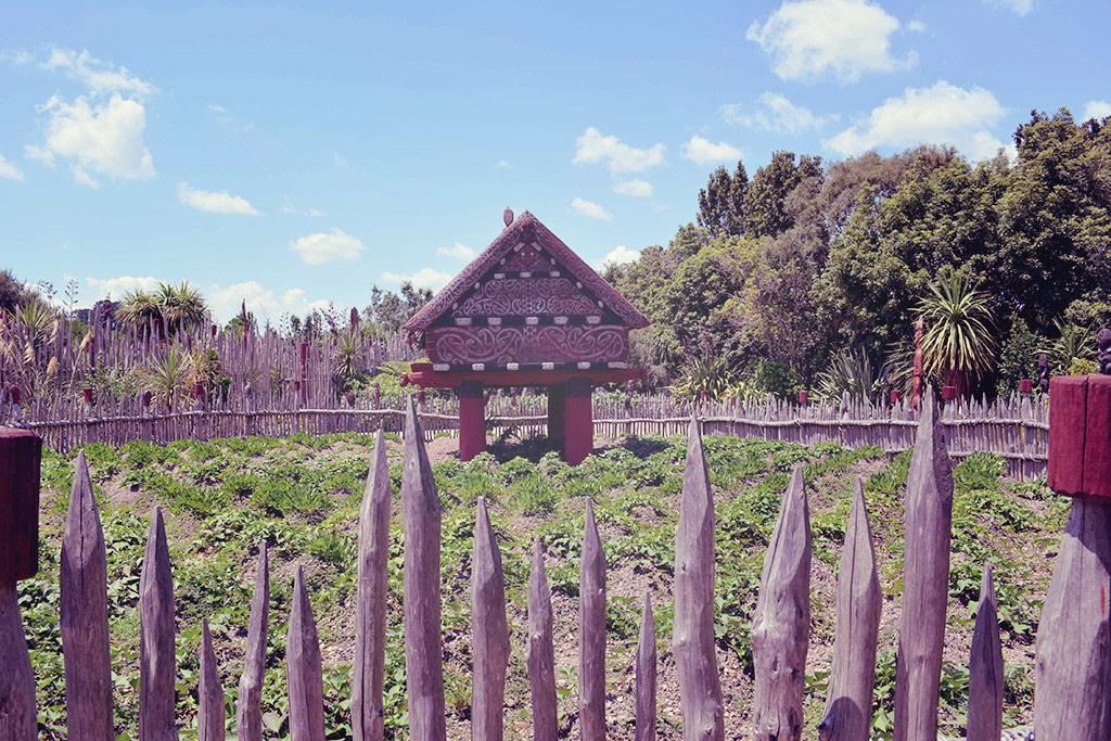 Te Parapara Garden